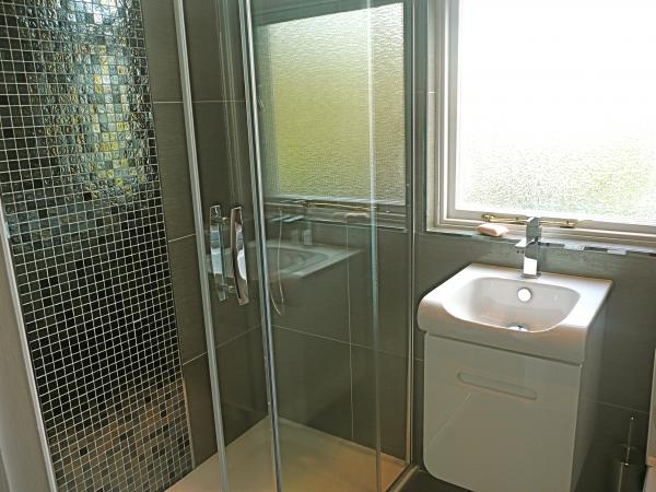Large Rain Forest Rain Water Shower Room